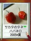 Pic_004_1